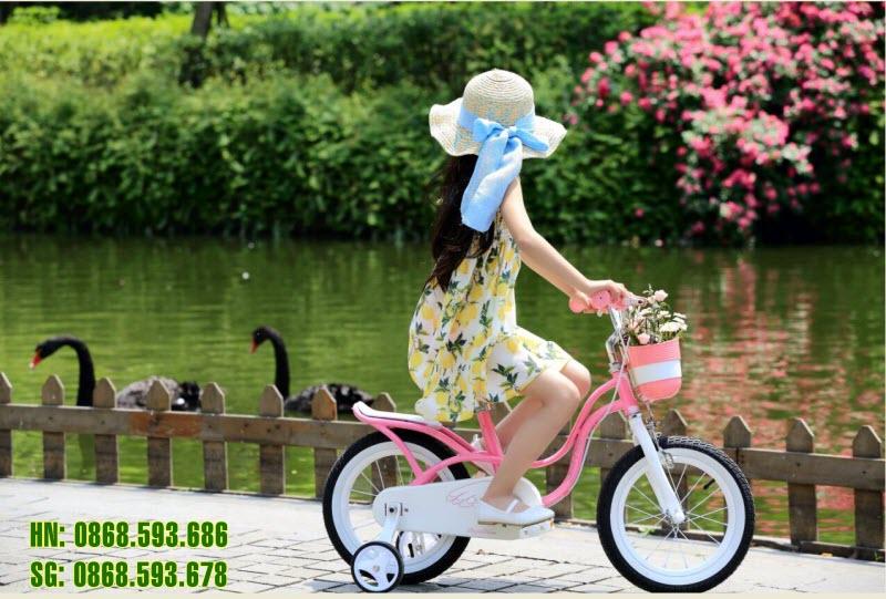 Chi tiết các bộ phận của xe đạp Royal Baby Litter Swan
