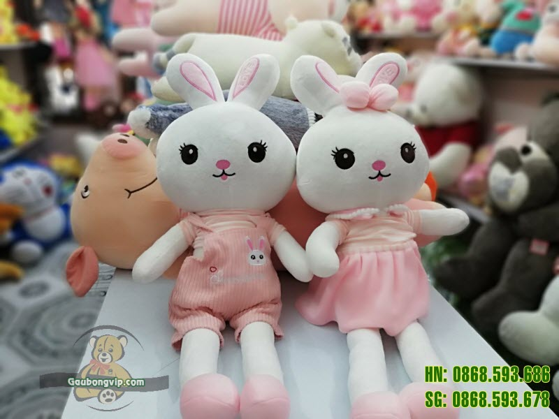 Thỏ trai gái 3