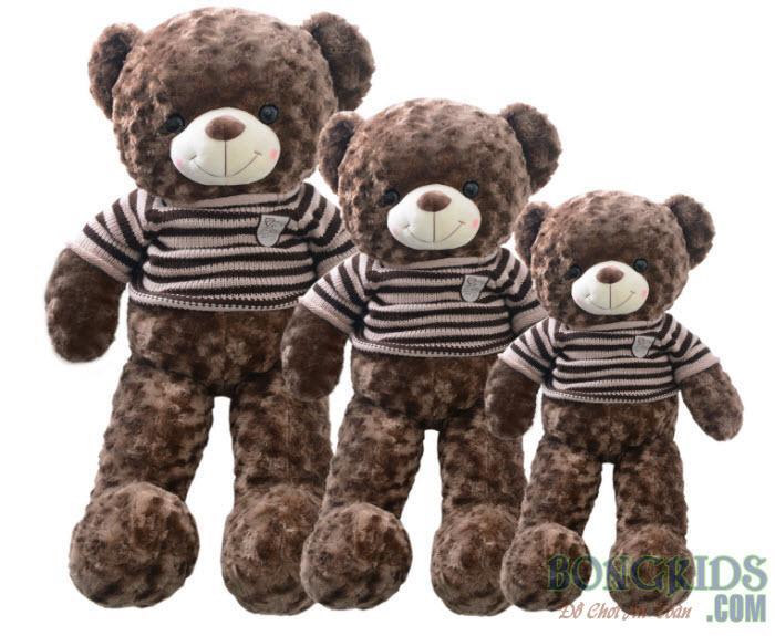 Gấu bông teddy socola cao cấp